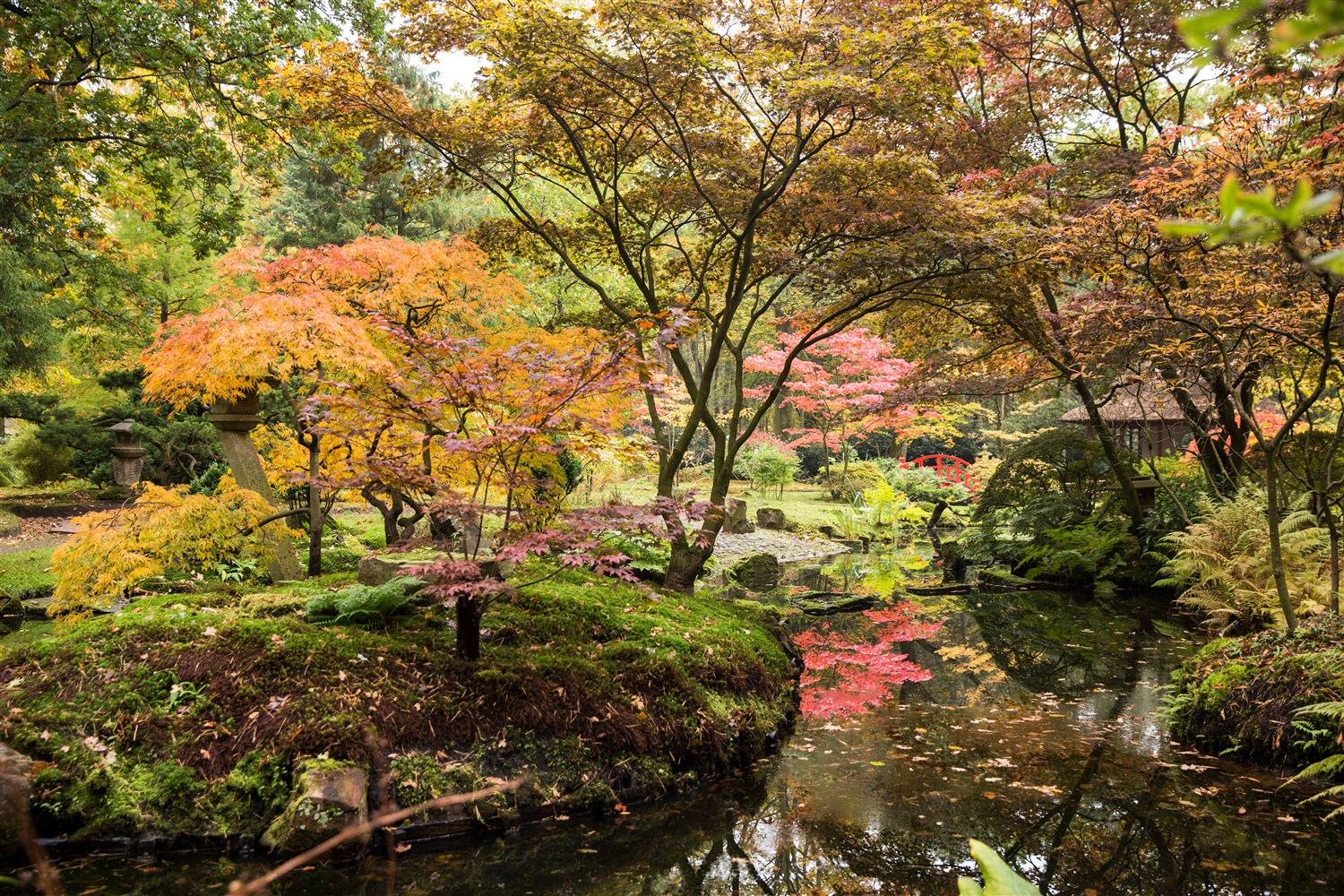 The Japanese Garden in The Hague, The Netherlands